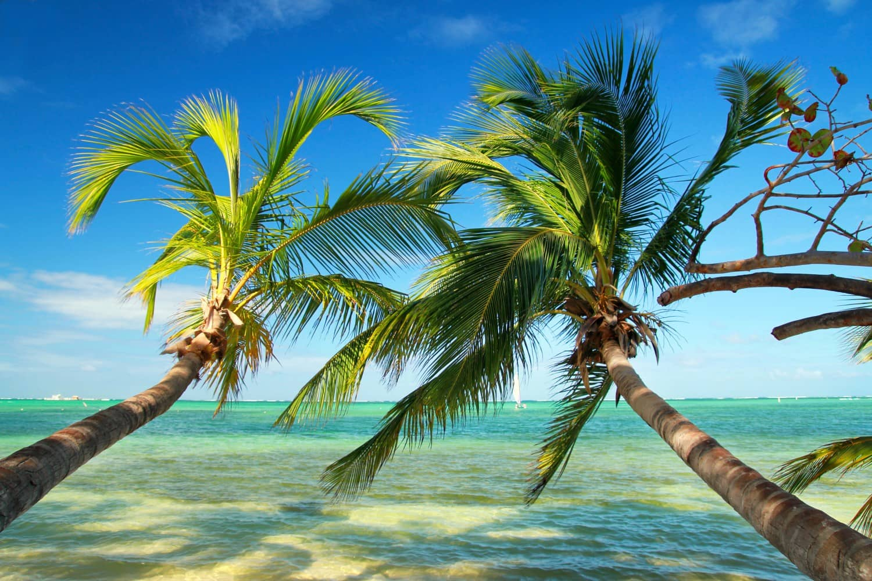 Armonie Voyages_4_Republique dominicaine