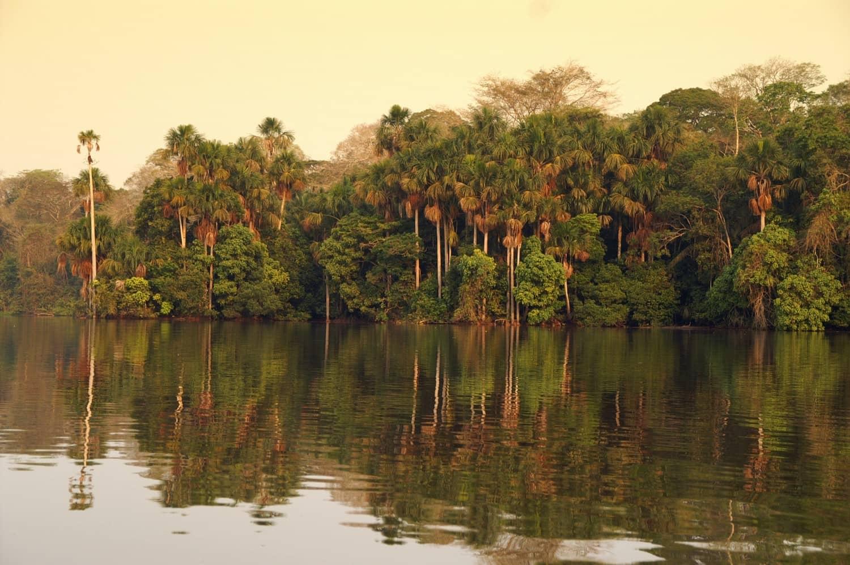 pérou-forêt-armonie voyages_poitiers